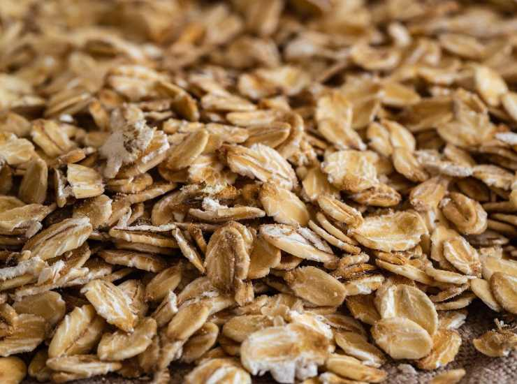 Muffin integrali ai mirtilli FOTO ricettasprint