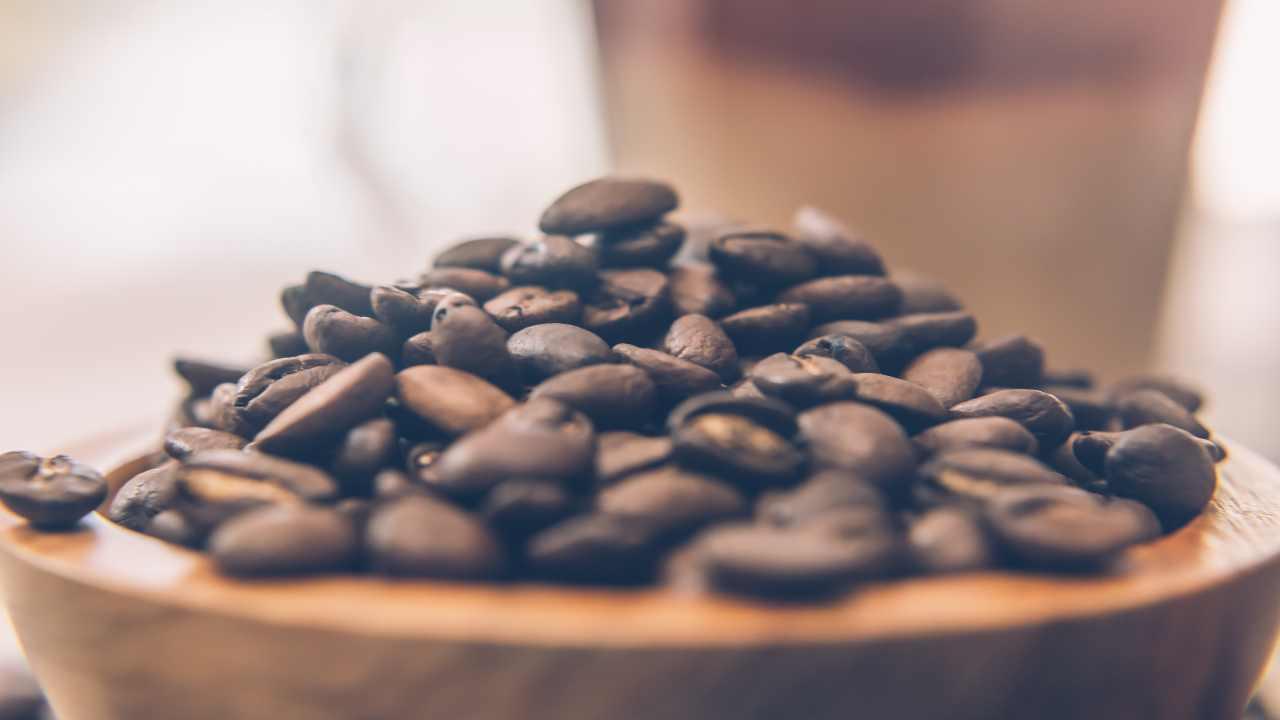 Tartellette al caffè FOTO ricettasprint