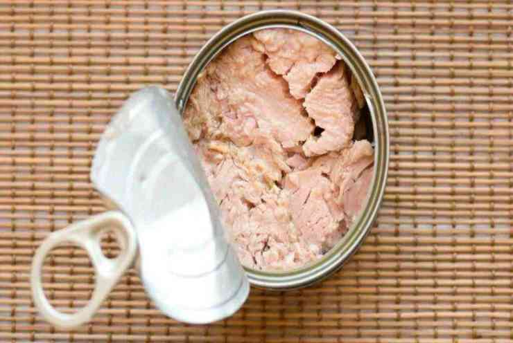 Bignè ripieni di salsa tonnata FOTO ricettasprint