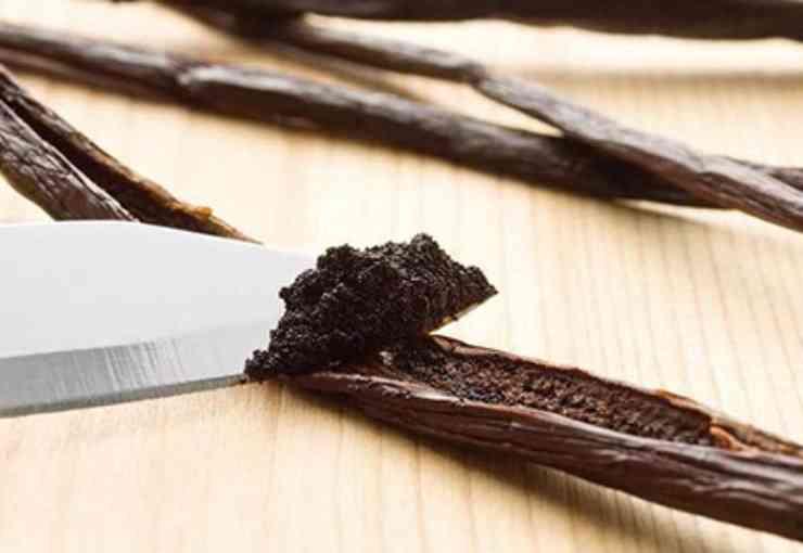 Focacce morbidi alla vaniglia FOTO ricettasprint