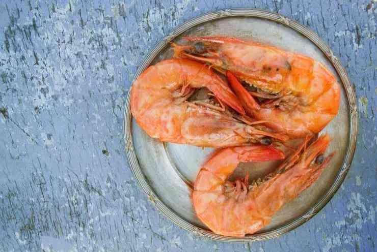 Insalata-arancia-e-gamberi-FOTO-ricettasprint