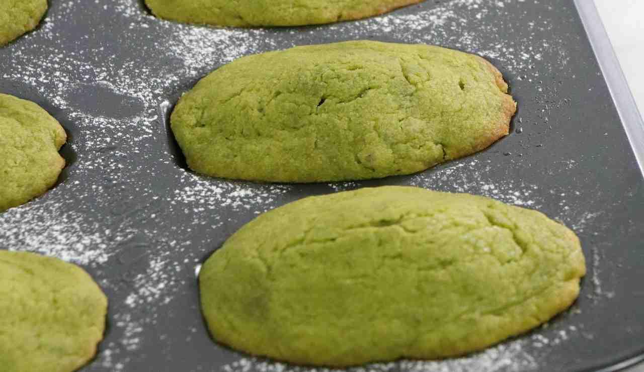 Madeleines al pesto di zucchine e basilico