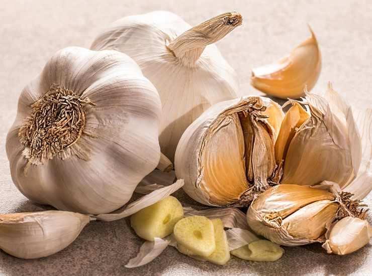 Canocchie con aglio e basilico FOTO ricettasprint