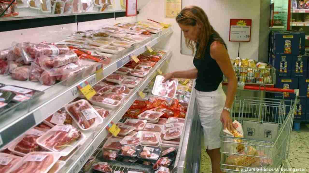 Salmonella in carne di pollo