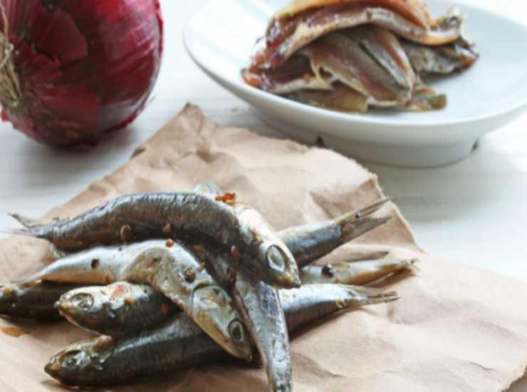 Zucchine ripiene tonno capperi e alici FOTO ricettasprint