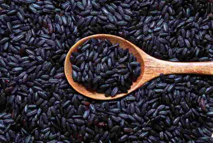 Arancini di riso venere e pesce FOTO ricettasprint