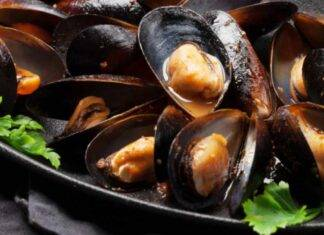 Finger food i molluschi di mare