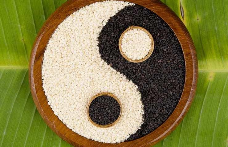 Dieta Yin e Yang Foto dal web