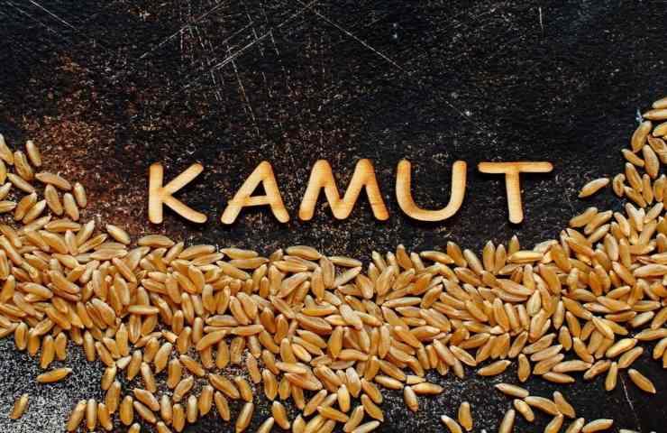 Grano Kamut
