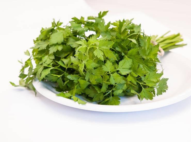 Insalata di farro con pomodori e legumi in verde ricetta