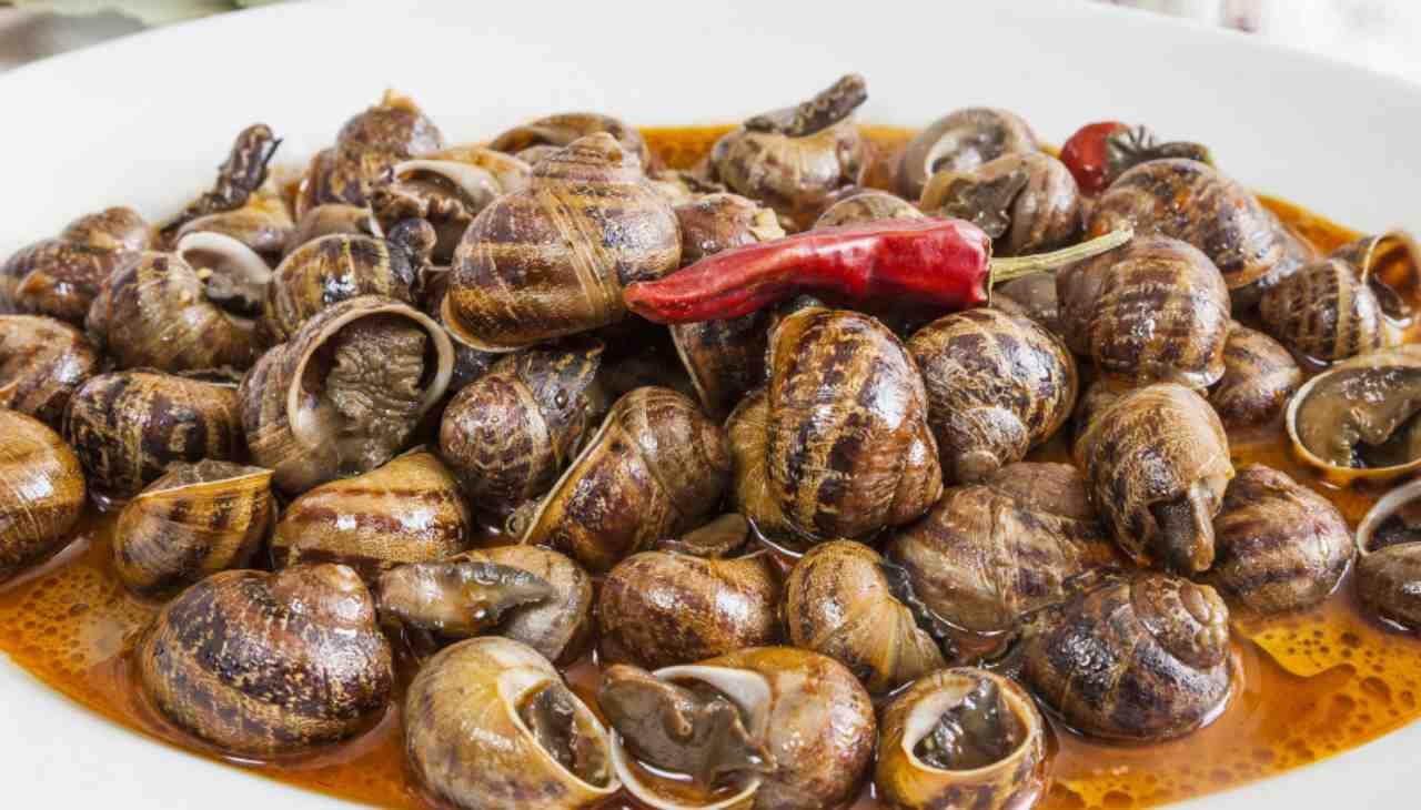 Piatto unico di escargots