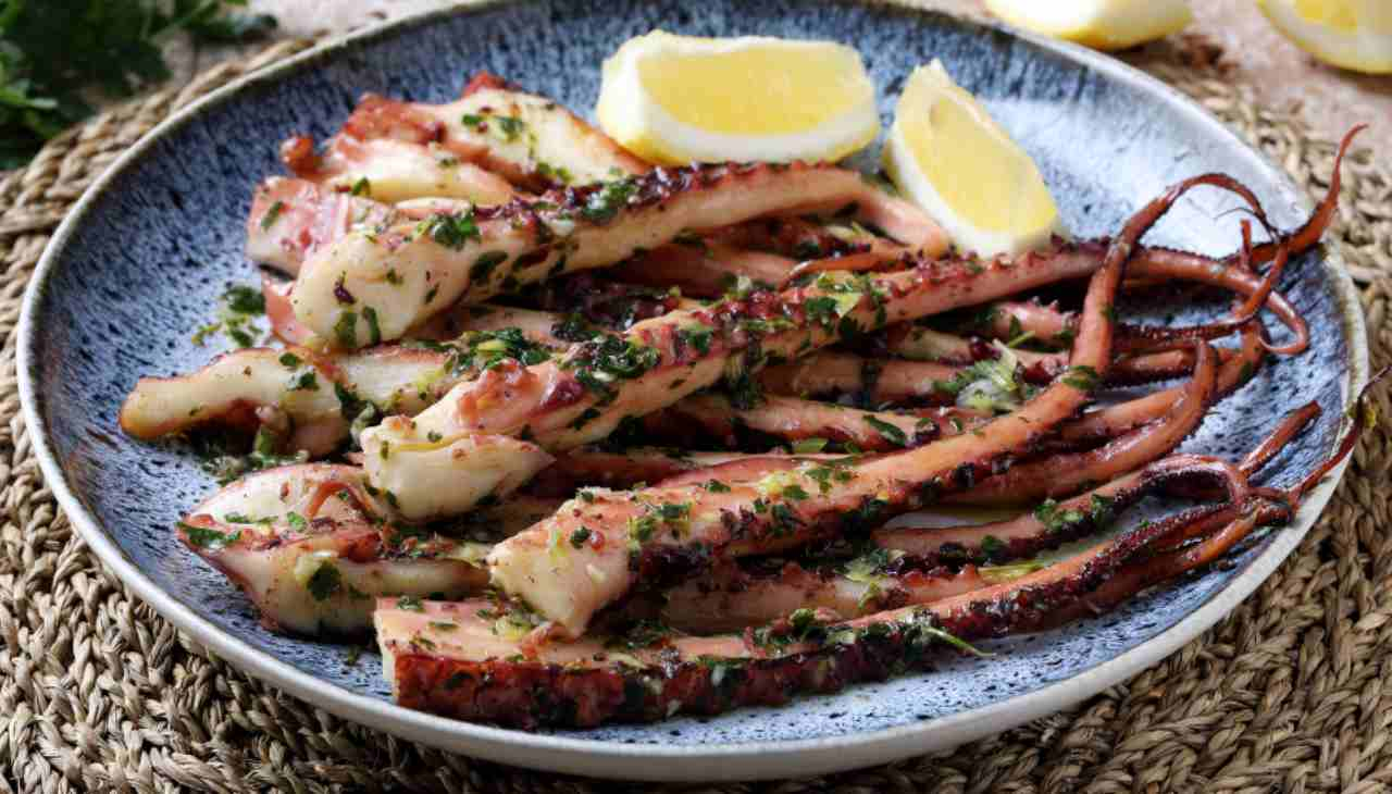 Mollusco marinato e grigliato