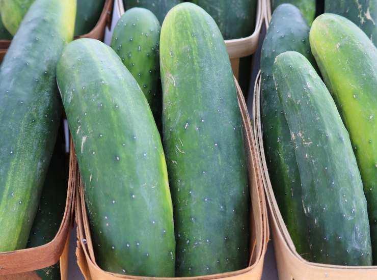 Insalata pomodori cetrioli e ricotta FOTO ricettasprint