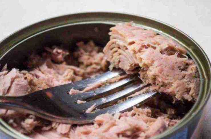 Schiacciatine tonno e pomodoro in padella FOTO ricettasprint