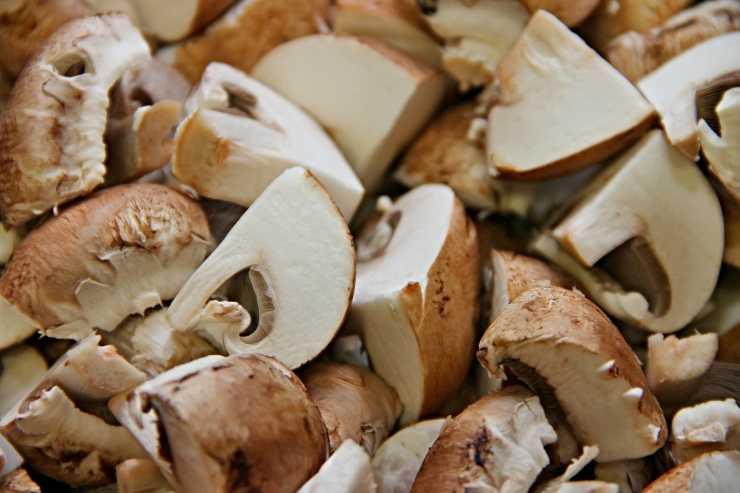 Arrosto vegano di funghi e noci FOTO ricettasprint