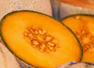 Conservare il melone in inverno