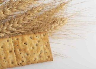 crackers semi natalia cattelani ricetta FOTO ricettasprint