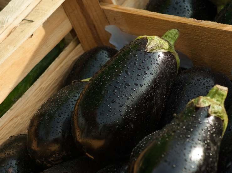 Involtini di melanzane sott'olio FOTO ricettasprint