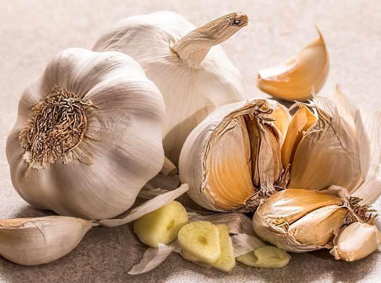 Pane morbido all'aglio in padella FOTO ricettasprint