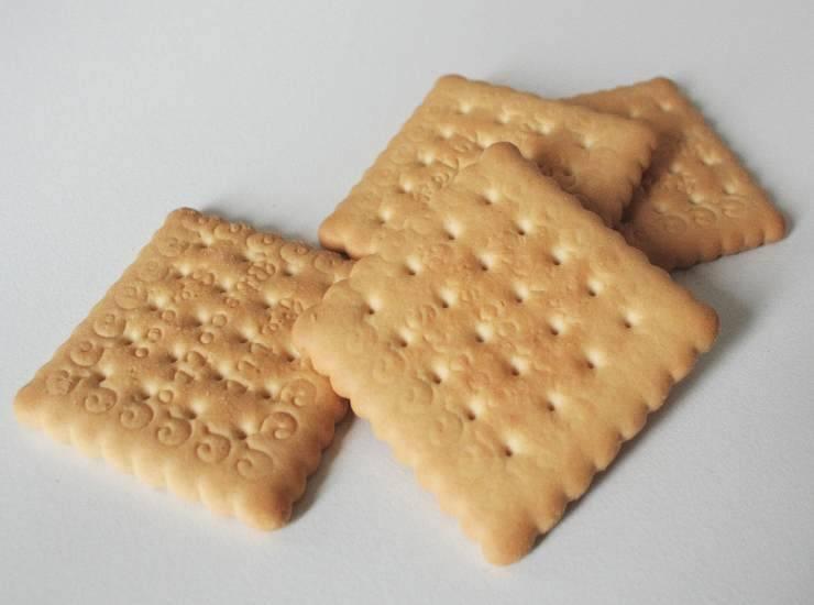 Pasticcini al cocco e cioccolato senza cottura FOTO ricettasprint