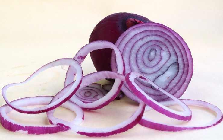Fagottini con cipolle rosse FOTO ricettasprint