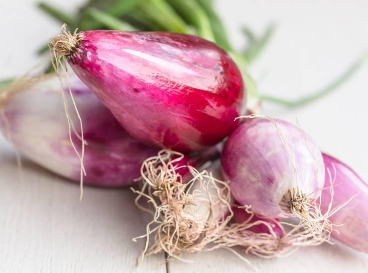 Peperoni e cipolle in agrodolce da conservare nei vasetti ricetta