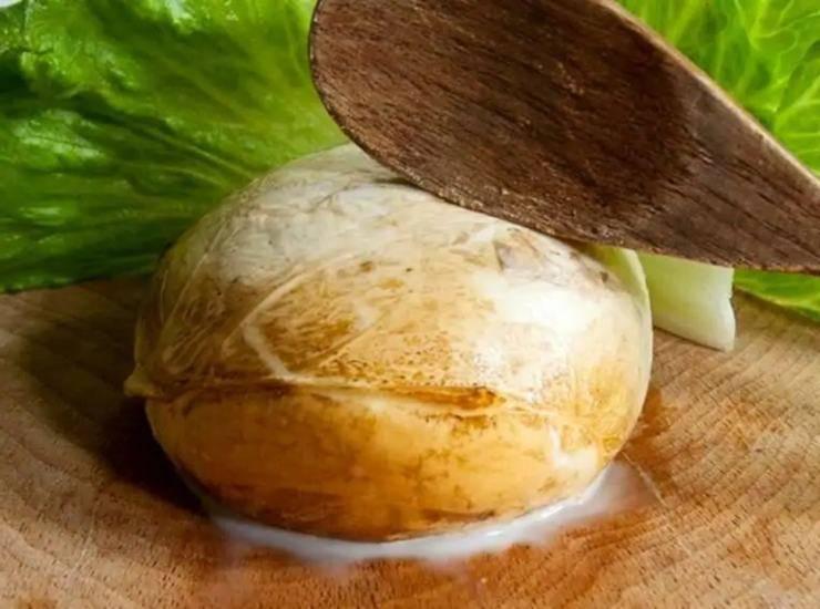 Torta salata con zucca e provol
